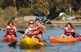 Kayak Rentals in Carlsbad