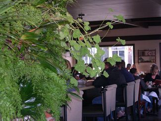 Chef Jeff Rossman uses the herbs grown on his indoor hanging wall garden.