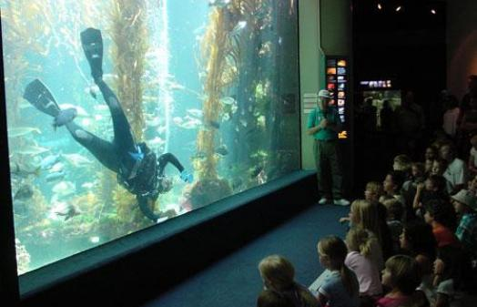 Birch Aquarium | Hours, Directions, Guide | SanDiego.com