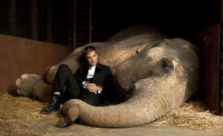 "Robert Pattinson as Jacob and Rosie the elephant in ""Water for Elephants."""
