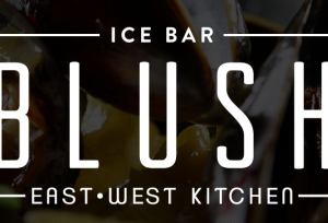 Blush Ice Bar